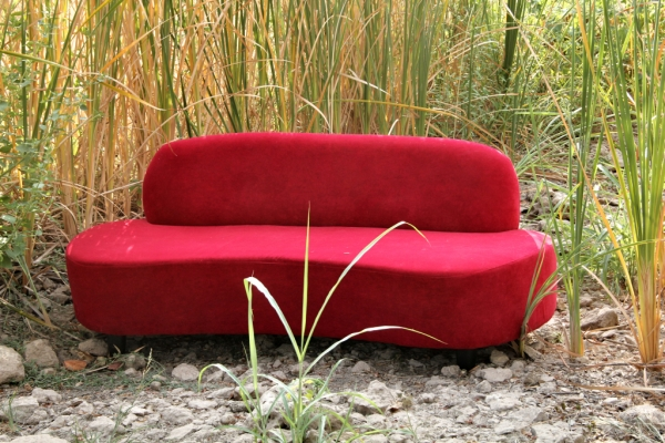 red-couch-00341E8708F-4EFC-2A40-A067-343D52D1F215.jpg