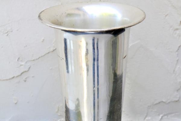 short-silver-vase41072E7D-AED8-25F9-E438-E3A17D486483.jpg