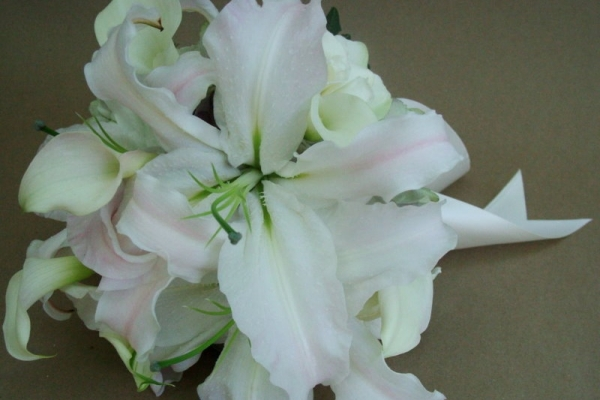 visual-lyrics-bouquets1342C098222-EAC7-A872-FD0E-6AB8255D5CC0.jpg