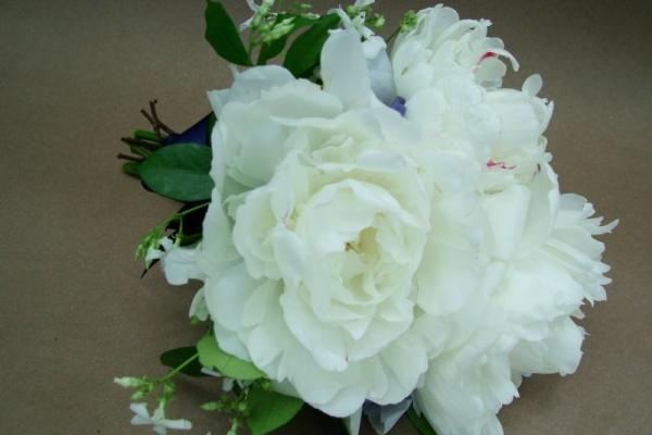 visual-lyrics-bouquets199BCB72766-C100-0610-5028-D4FD80BE2AF3.jpg