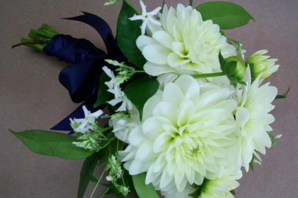 visual-lyrics-bouquets201FD4CF442-5C39-3F6C-8E64-1BC55699C643.jpg