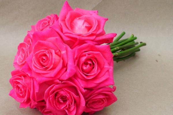 visual-lyrics-bouquets2295CDBA40-B9F2-E12F-4B23-C386C35B9DCB.jpg