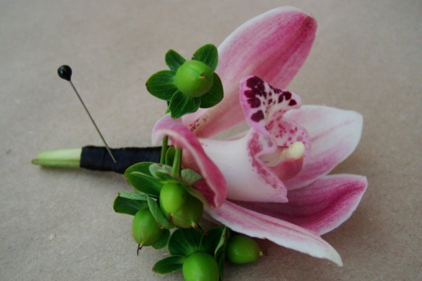 visual-lyrics-boutonniere1506EA802B-0907-DAA0-6A39-00903757C987.jpg