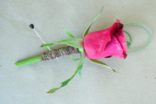 visual-lyrics-boutonniere23DA7C67C8-33B9-19FD-2298-685857628DDE.jpg